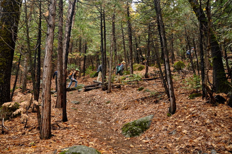 The group charges up the trail through the fall leaves