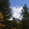 It snowed in the high country overnight, while we just got rain in the valley. There's new snow on half dome.