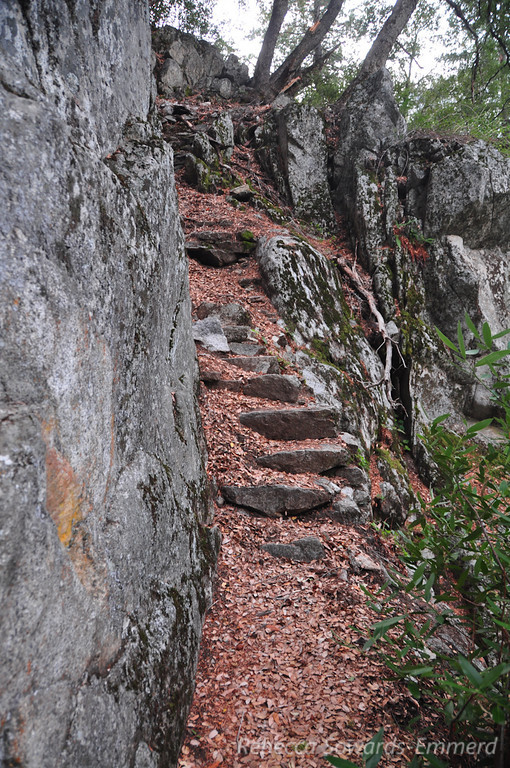 Those steps again, leading the way