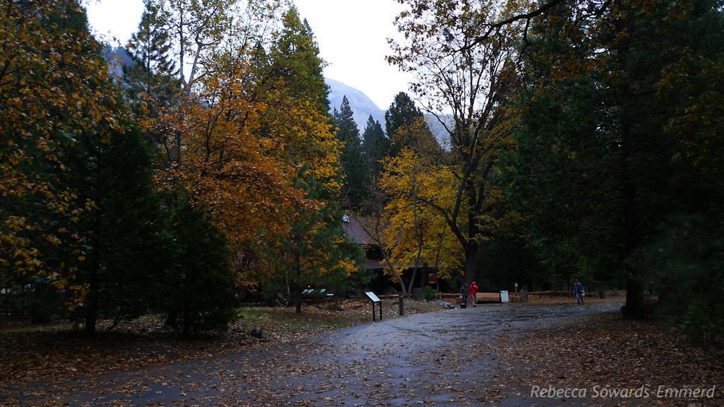 Drizzly fall morning in the Valley