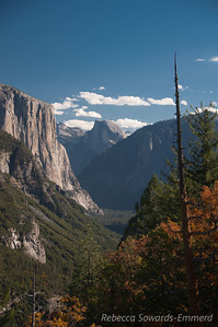 Half Dome and El Capitan from Turtleback Dome. The fall colors were peaking in the valley this weekend making for some nice orange in the foreground of these 'standard' shots.