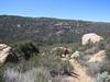 Descending into Hauser Canyon.