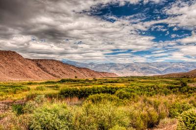 sierra-mountains-field
