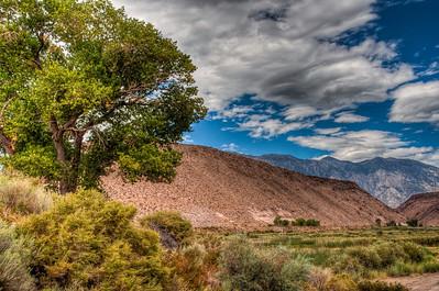 sierra-mountains-field-2