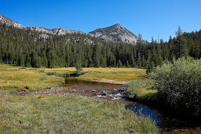 sierra-mountains-creek-meadow
