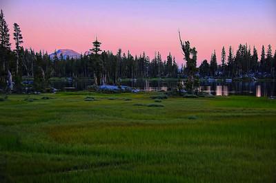 graveyard-lakes-grasses