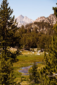 kings-canyon-creek