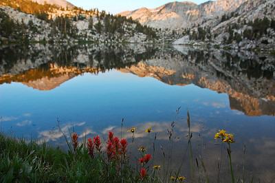 mountain-lake-wildflowers
