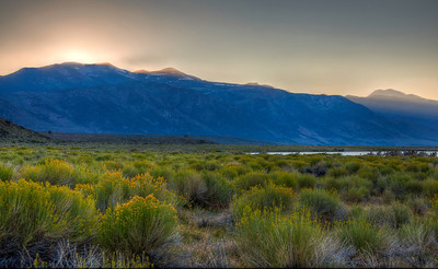 sage-mono-lake-mountains-hdr