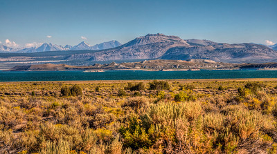 sage-mono-lake-mountains