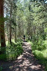 trail-hiking