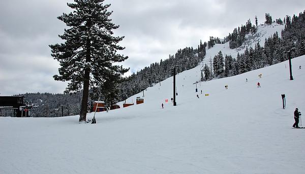 mountain-skiers