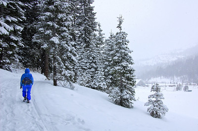 snow-hiker-6