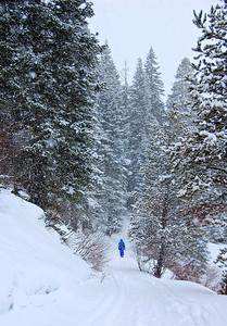 snow-hiker-4