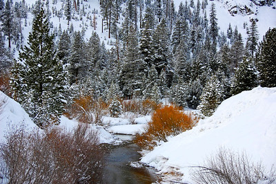 snowy-creek-3