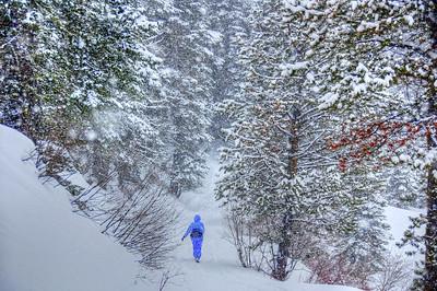 snow-hiker-2-2