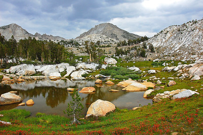 sierra-mountains-lake-flowers