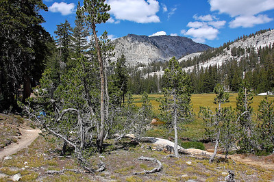 sierra-mountains-meadow