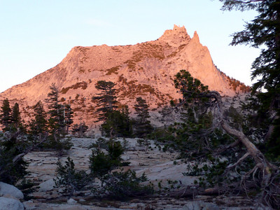 Evening alpenglow on Cathedral Peak.