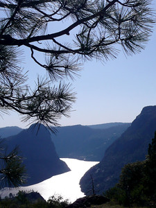Hetch Hetchy Res. from my afternoon walk.