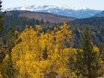 Mountains over Aspen from 89 Copyright 2009 Neil Stahl