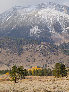 Snowy Mountain over Patch of Color Copyright 2009 Neil Stahl