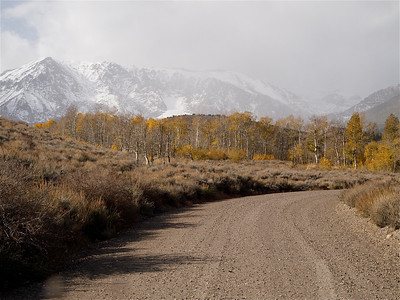 Gravel Road by Aspen with Snowy Mountains above Copyright 2009 Neil Stahl