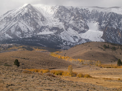 Snowy Mountain over a Draw full of Color off Parker Lake Road Copyright 2009 Neil Stahl