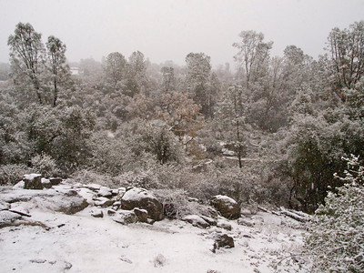 Snowy Day View across Coarsegold Creek