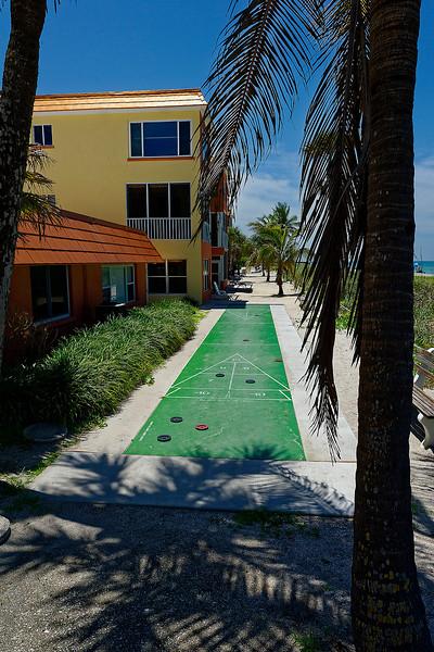 Shuffle - Siesta Key Florida