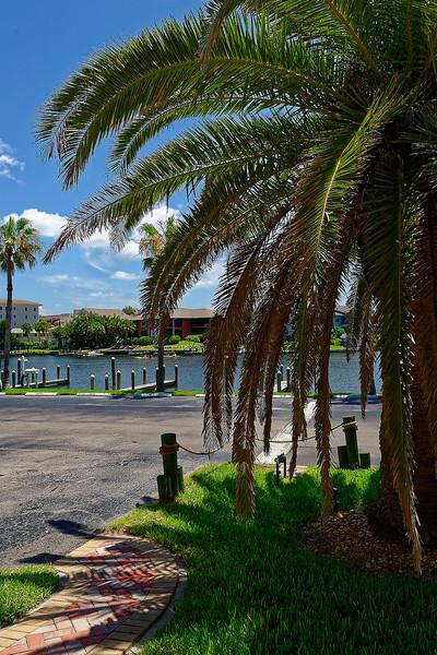 Blind Pass Lagoon - Siesta Key Florida