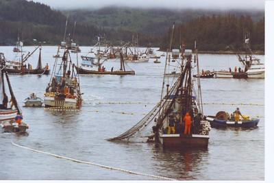 1988 Port San Juan Hatchery Special Opener