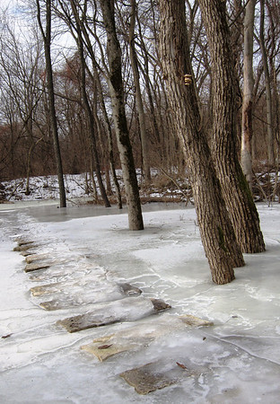 Frozen melt water over the stepping stones. Oysters just within reach.