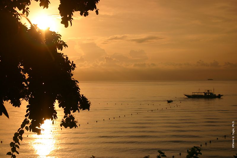 Alegre Beach, Cebu - Sunrise?