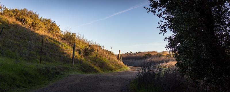 trail at sunrise in rancho san antonio