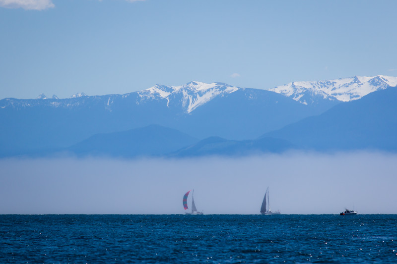 sailboats in fog