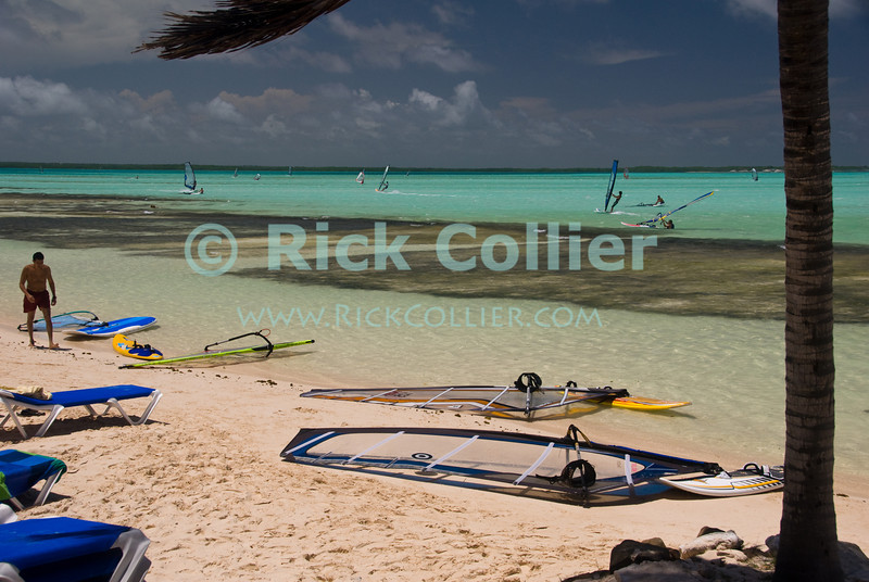 """Bonaire, Netherland Antilles -- """"Jibe City"""" has established itself as a premier beach and windsurfing destination, in a large inlet that is exposed to the wind but protected from the open sea on the windward side of Bonaire.   © Rick Collier<br /> <br /> <br /> <br /> <br /> Bonaire; """"Netherlands Antilles""""; Caribbean; tropic; tropical; vacation; destination; beach; wind; windsurf; windsurfing; """"wind surfing""""; ocean; sea; seashore; play; """"beach play""""; swim; swimming; sun; sunbathing;"""