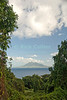 St. Eustatius (Statia) - A scenic view - St. Kitts is framed by the Caribbean sea and the vines and trees at the Statia botanical gardens.  © Rick Collier