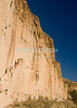 Bandelier National Monument, near Los Alamos and Santa Fe, New Mexico, USA.  Cave dwellings dot the lower parts of the massive cliffs that line Frijoles Canyon.  © Rick Collier<br /> <br /> <br /> <br /> <br /> <br /> <br /> US USA New Mexico Santa Fe Bandelier National Monument Frijoles Canyon cliff cliffs valley canyon native american cave dwelling pueblo view tree trees forest woods stream river