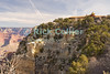 The Grand Canyon, Arizona, USA. The historic El Tovar hotel stands atop the cliff at the edge of the Grand Canyon.  © Rick Collier<br /> <br /> <br /> <br /> <br /> <br /> <br /> <br /> US USA Arizona Grand Canyon Colorado River valley 'El Tovar' hotel view sun shadow day daylight tree trees cliff overlook river bed riverbed