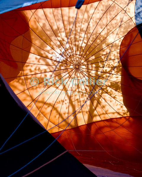 "The rising sun backlights trees and passersby, throwing shadows through the material of a balloon on the ground as it is inflated.  Balloon Festival, Long Branch Farm, Winchester, Virginia, USA.  © RickCollier.com<br /> <br /> <br /> <br /> <br /> <br /> ""balloon festival""; USA; Virginia; Winchester; ""Long Branch""; ""Long Branch Farm""; morning; balloon; lift; ""balloon lift""; ""hot air balloon""; fill; flame; torch; burner; liftoff; takeoff; inflate; fill; inflation; sun; sunrise; shadow; tree; trees; shadows;"
