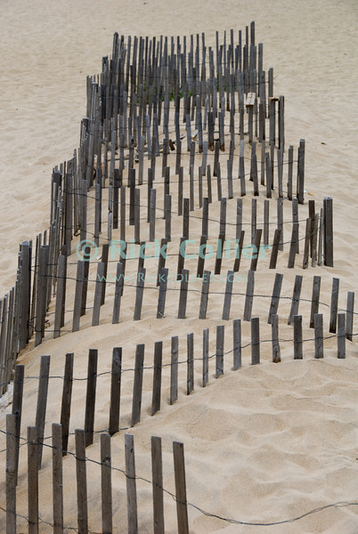 """""""Fence Snake"""" - A dune fence set up in a serpentine pattern.  Ocean Grove, New Jersey, USA.<br /> <br /> <br /> USA """"New Jersey"""" NJ """"Ocean Grove"""" Ocean Grove dune fence sand beach"""