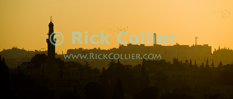 Setting sun turned the sky yellow and orange, silhouetting mosque minarets and the city skyline on some of the seven hills in Amman, Jordan.  © Rick Collier<br /> <br /> <br /> <br /> <br /> <br /> <br /> Jordan Amman city Islamic buildings apartments 'city center' panorama panoramic sunset Arab Islamic skyline profile minaret minarets minarettes