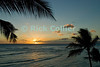 Sunset lights the sky orange and reflects off the ocean surface.  Waikiki, Honolulu, Oahu, Hawaii.<br /> <br /> <br /> <br /> <br /> Hawaii Honolulu Waikiki beach sea ocean sunset reflection palm tree