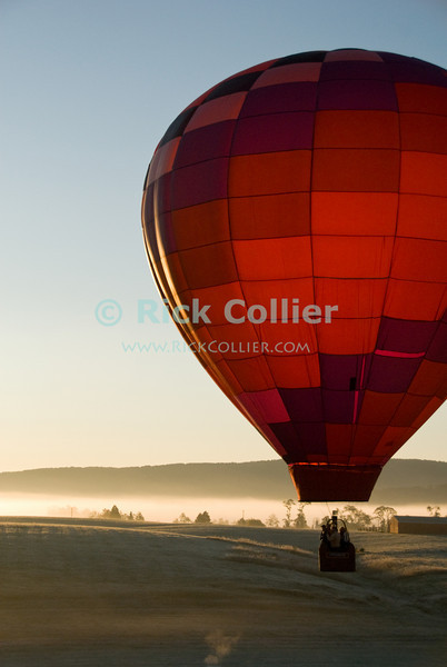 """Rising sun backlights and illuminates a balloon lifting over fields and pastures in early morning at the annual Winchester Balloon Festival.  Long Branch Farm, Winchester, Virginia, USA.  © RickCollier.com<br /> <br /> <br /> <br /> <br /> <br /> """"balloon festival""""; USA; Virginia; Winchester; """"Long Branch""""; """"Long Branch Farm""""; tree; trees; dawn; morning; balloon; lift; """"balloon lift""""; field; sunrise; mist; fog; frost; fence; fences; field; pasture; tree; trees;"""