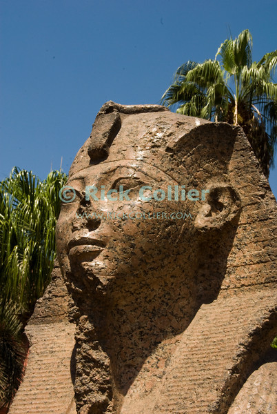 """The Egyptian Museum, Cairo, Egypt -- The famous Egyptian Museum of antiquities in Cairo is flanked outside by ancient statues of long-passed pharoahs.  © Rick Collier / RickCollier.com<br /> <br /> <br /> <br /> <br /> travel; vacation; destination; Egypt; Cairo; antiquities; """"ancient Egypt""""; """"Egyptian Museum""""; statue; stone; pharoah"""