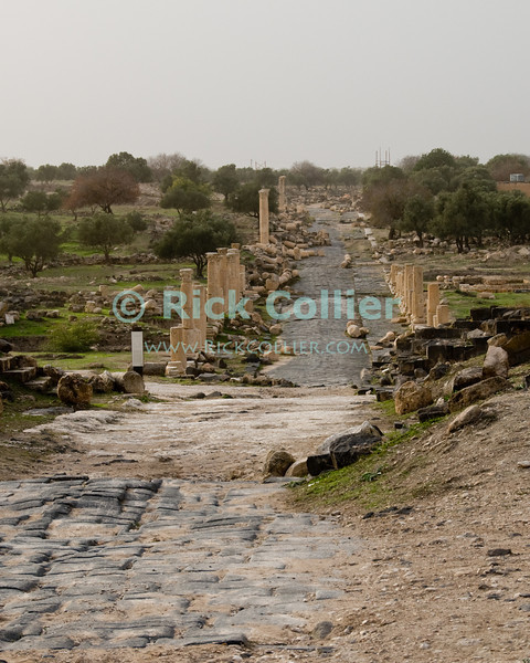"The Roman ""main street,"" the Decumanus Maximus, at the biblical town of Gadara, now called Umm Qais in northwestern Jordan.  © Rick Collier<br /> <br /> <br /> <br /> Jordan 'Umm Qais' Ottoman Roman Gadara Gadarenes Bible Biblical ruin ruins 'ancient world' archeology 'archeological site' classical street column columns 'Decumanus Maximus'"