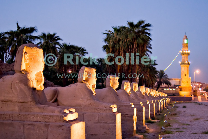"""Luxor, Egypt -- Sphinxes line both sides of the road approaching Luxor Temple.  The road originally extended all the way between Karnak and Luxor temples.  (Today, the road ends at stairs to a mosque, the minaret of which is visible at the """"end"""" of the road.) © Rick Collier / RickCollier.com.<br /> <br /> <br /> <br /> <br /> <br /> travel; vacation; tour; tourism; tourist; destination; Egypt; Luxor; temple; hieroglyph; hieroglyphic; """"ancient Egypt""""; archeology; archeological; ruin; sphinx; """"Luxor Temple""""; Amenhotep; """"Ramses II""""; obelisk; Mut; Khonsu; sphinx; sphinxes;"""