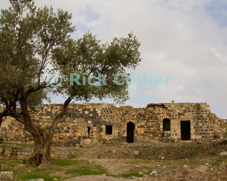 Ottoman ruins at Umm Qais, in northern Jordan.  Recorded in history as the town of Gadara, home of the Gadarenes as described in the Bible.  The site is unusual in that it contains ruins of an Ottoman town, over a Roman town, with the original Gadarene settlement below.  © Rick Collier<br /> <br /> <br /> <br /> Jordan 'Umm Qais' Ottoman Roman Gadara Gadarenes Bible Biblical ruin ruins 'ancient world' archeology 'archeological site'