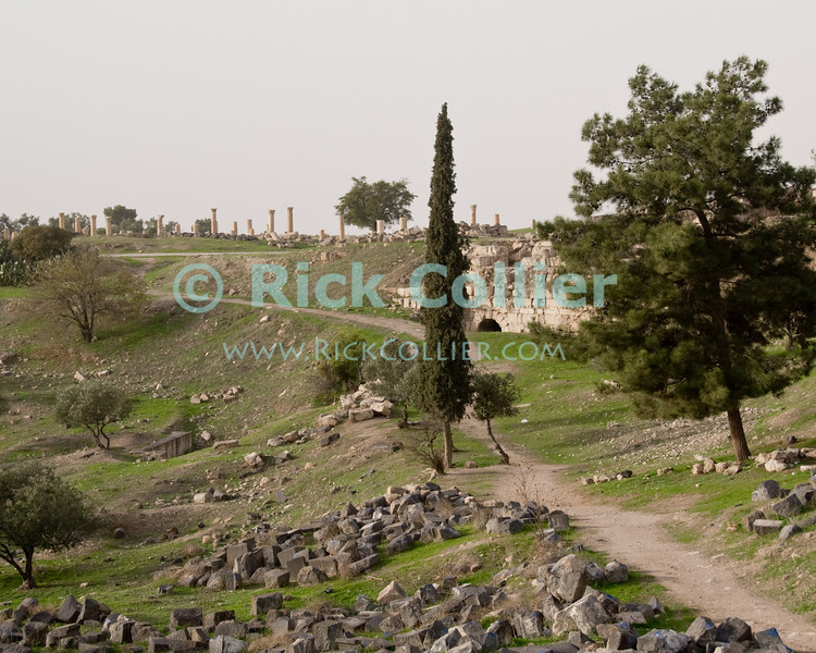 Roman ruins at Umm Qais, in northern Jordan.  Recorded in history as the town of Gadara, home of the Gadarenes as described in the Bible.  The site has ruins from three periods:  an Ottoman town, over a Roman town, and the original Gadarene settlement.   © Rick Collier<br /> <br /> <br /> <br /> Jordan 'Umm Qais' Ottoman Roman Gadara Gadarenes Bible Biblical ruin ruins 'ancient world' archeology 'archeological site'